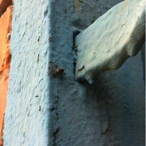 虫の知らせと観察眼