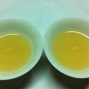 台茶17号白鷺に見る台湾春茶の近況