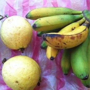 台湾はフルーツを楽しむ国