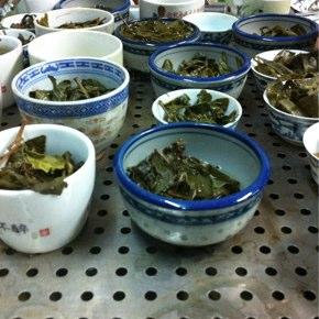 続台湾茶論