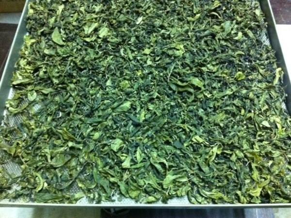 台湾茶冬片完成